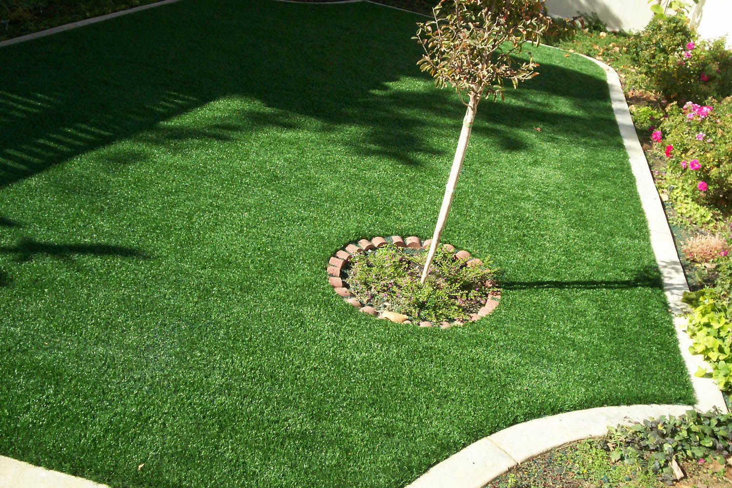 PreGra Premium Artificial Grass Gallery